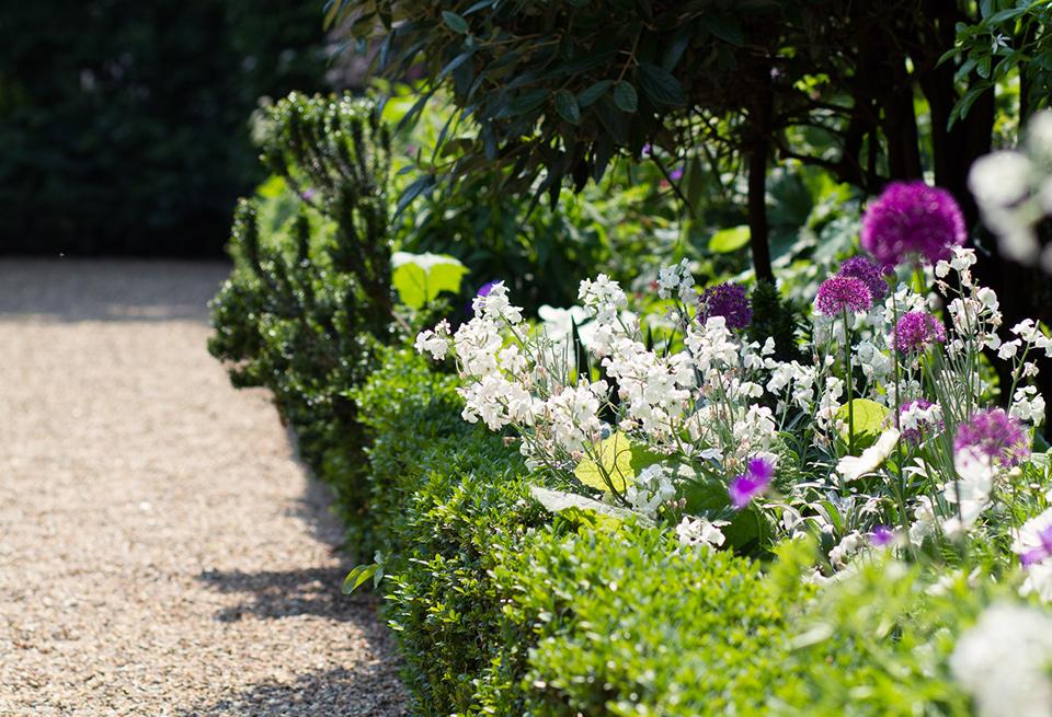 garden-open-days-flowers