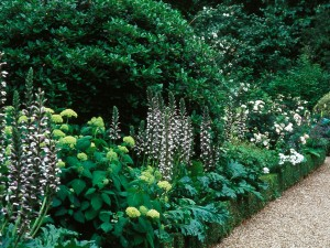 Tour gardens in London, flowers bordering the pathways at Spencer House
